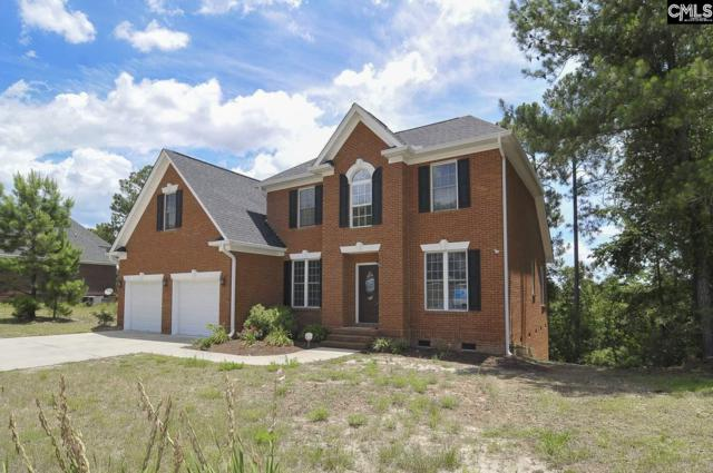 245 Polo Hill Road, Columbia, SC 29223 (MLS #451061) :: RE/MAX AT THE LAKE