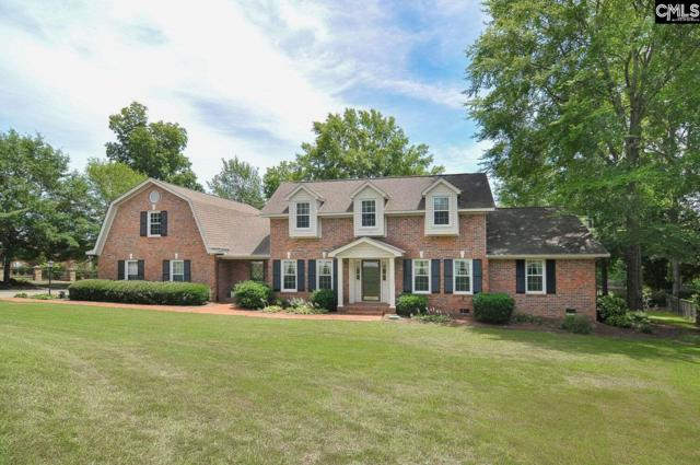 101 Holly Ridge Lane, West Columbia, SC 29169 (MLS #451099) :: EXIT Real Estate Consultants