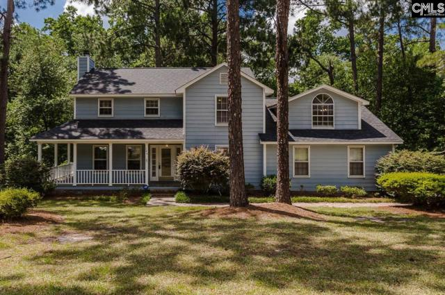 146 Lightwood Knot Road, Columbia, SC 29223 (MLS #451117) :: Home Advantage Realty, LLC