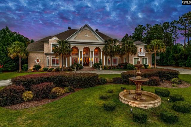 1107 Enclave Way, Columbia, SC 29223 (MLS #451156) :: EXIT Real Estate Consultants