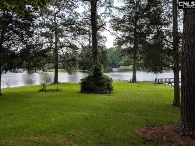 138 Pine Point Drive, Lexington, SC 29072 (MLS #451167) :: The Olivia Cooley Group at Keller Williams Realty