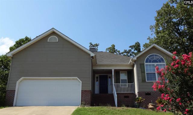 604 Beech Branch Drive, Irmo, SC 29063 (MLS #451381) :: Home Advantage Realty, LLC