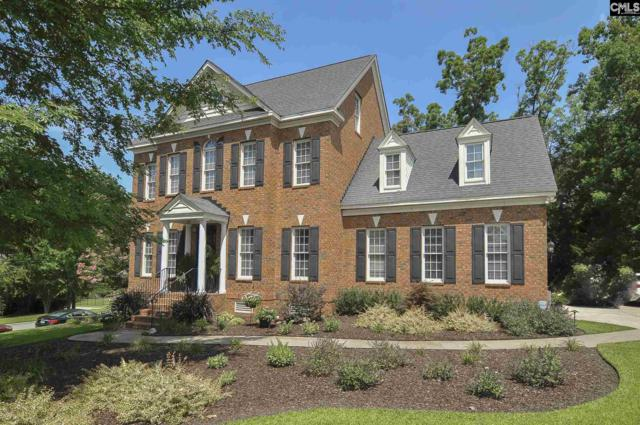 301 Sienna Drive, Chapin, SC 29036 (MLS #451427) :: EXIT Real Estate Consultants