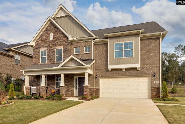 407 Maria Posada Court #136, Chapin, SC 29036 (MLS #451440) :: EXIT Real Estate Consultants
