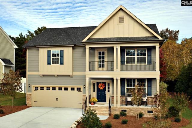 439 Maria Posada Court #142, Chapin, SC 29036 (MLS #451447) :: EXIT Real Estate Consultants