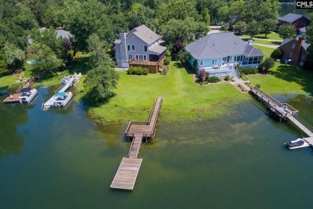 168 Rum Gully Lane, Chapin, SC 29036 (MLS #451598) :: EXIT Real Estate Consultants