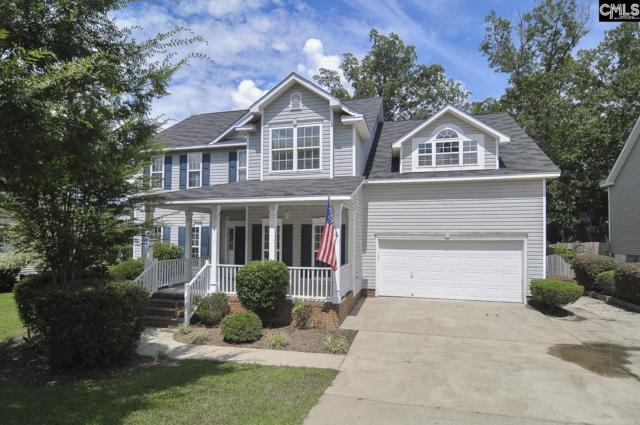 6 Ultra Way, Irmo, SC 29063 (MLS #451655) :: Home Advantage Realty, LLC