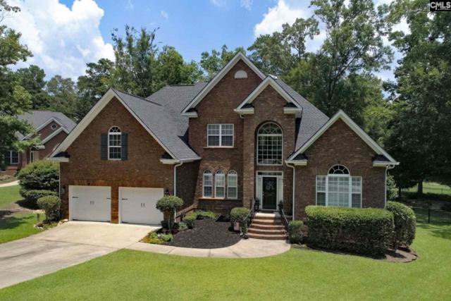 124 Oak Trace, Chapin, SC 29036 (MLS #451766) :: EXIT Real Estate Consultants