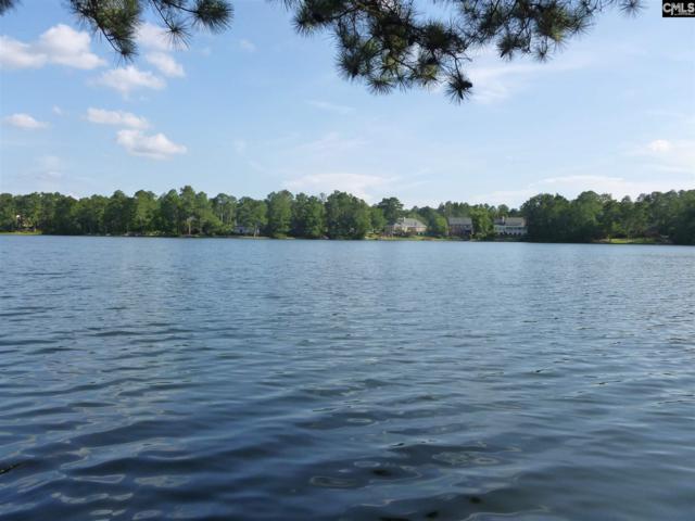 805 E Springs Road Lot 16, Columbia, SC 29223 (MLS #451825) :: EXIT Real Estate Consultants