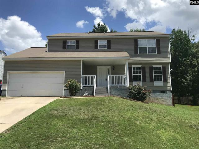 120 Tail Feather Way, Chapin, SC 29036 (MLS #451856) :: Home Advantage Realty, LLC