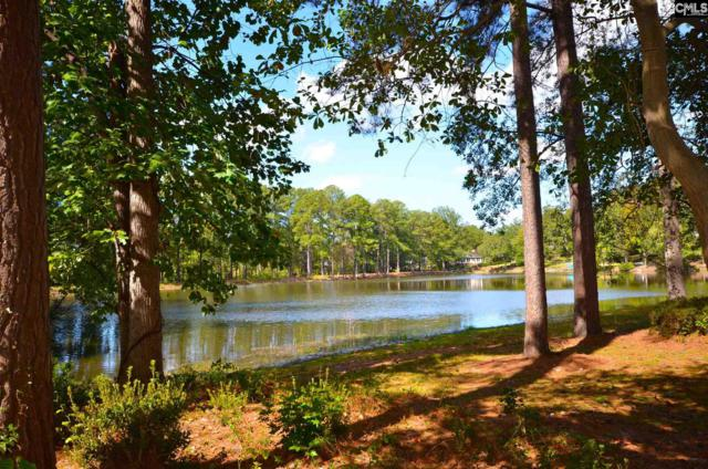 309 S Stonehedge Drive, Columbia, SC 29210 (MLS #451947) :: RE/MAX AT THE LAKE