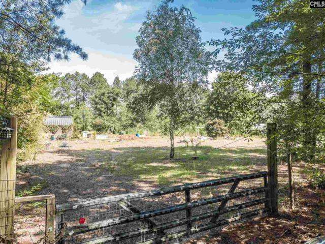 152 Sharon Acres Lane, Gaston, SC 29053 (MLS #452055) :: Home Advantage Realty, LLC