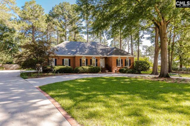 493 Galway Lane, Columbia, SC 29209 (MLS #452104) :: The Olivia Cooley Group at Keller Williams Realty