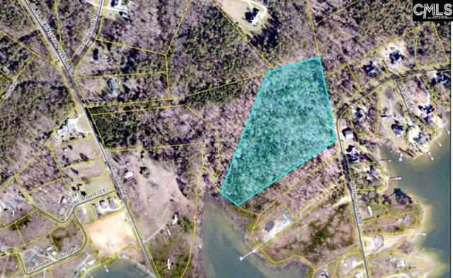 912 Willow Cove Road Tract 4, Chapin, SC 29036 (MLS #452199) :: Home Advantage Realty, LLC