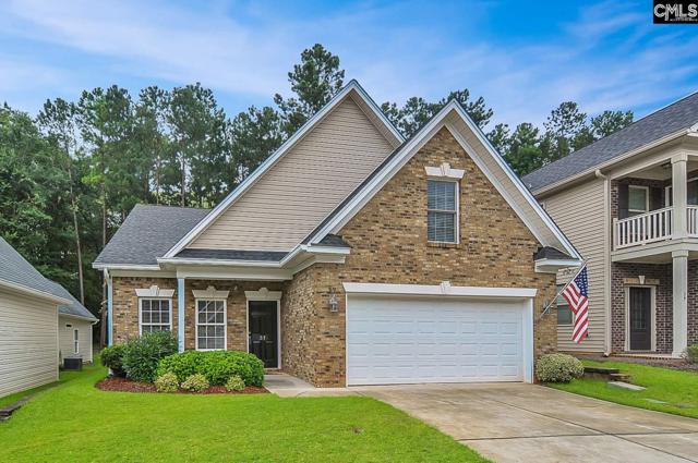 37 Revelstone Way, Chapin, SC 29036 (MLS #452385) :: Home Advantage Realty, LLC