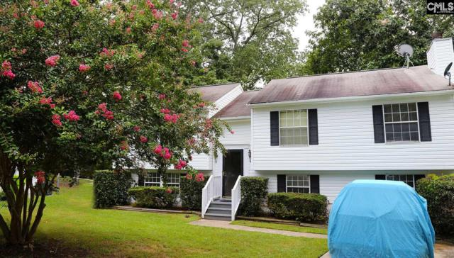 206 Valeworth Drive, Irmo, SC 29063 (MLS #452389) :: The Olivia Cooley Group at Keller Williams Realty