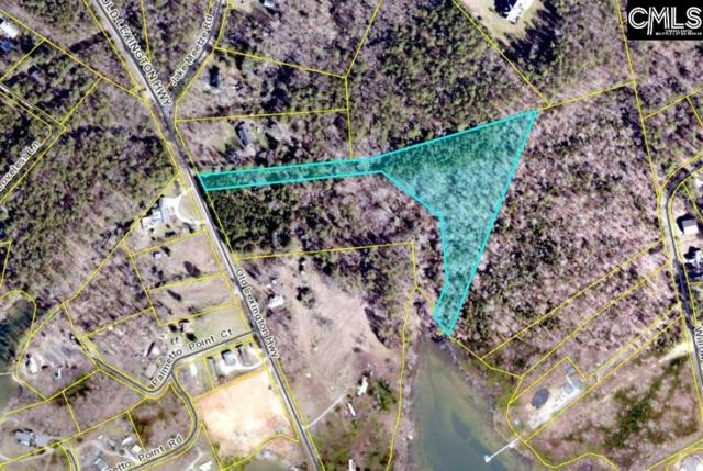 2723 Old Lexington Highway Parcel A, Chapin, SC 29036 (MLS #452428) :: The Olivia Cooley Group at Keller Williams Realty