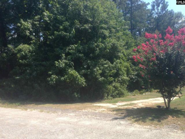 LOT 9 Lownsdale Road #9, West Columbia, SC 29170 (MLS #452449) :: The Olivia Cooley Group at Keller Williams Realty