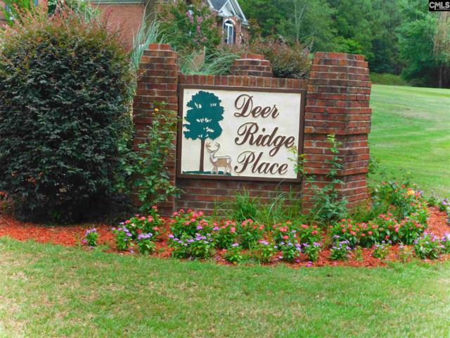 119 Deer Ridge Trail #13, Gilbert, SC 29054 (MLS #452648) :: EXIT Real Estate Consultants