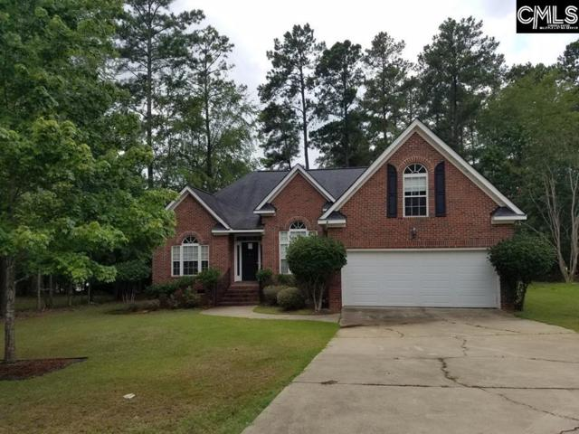 109 Oak Trace Court, Chapin, SC 29036 (MLS #452678) :: The Olivia Cooley Group at Keller Williams Realty