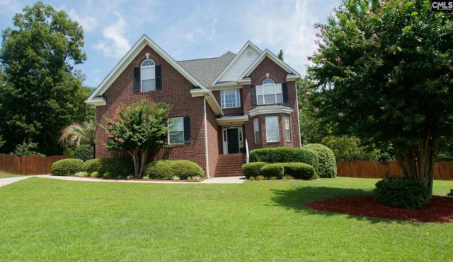 7 Coldwater Court, Irmo, SC 29063 (MLS #452723) :: Home Advantage Realty, LLC