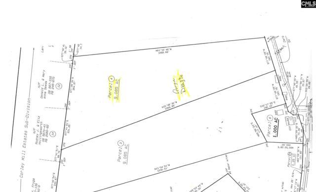 0 Darby Ambrose Road Lot 4, Lexington, SC 29072 (MLS #452734) :: RE/MAX AT THE LAKE