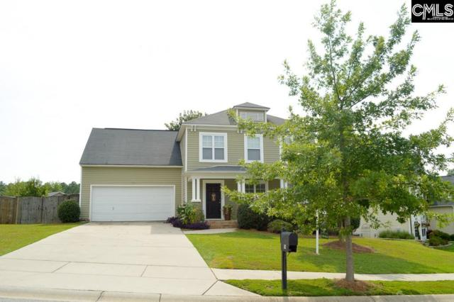 507 Foxstone Drive, Chapin, SC 29036 (MLS #452819) :: EXIT Real Estate Consultants