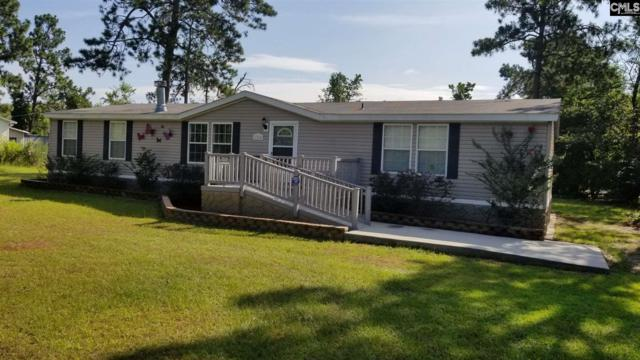125 Blackthorn Drive, Gilbert, SC 29054 (MLS #452838) :: EXIT Real Estate Consultants