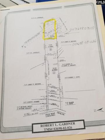 TBD Frye Road, Lexington, SC 29072 (MLS #452854) :: Home Advantage Realty, LLC