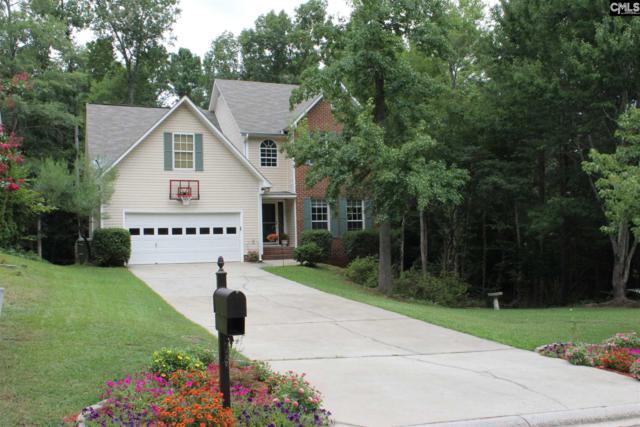 11 Plumwood Ct, Irmo, SC 29063 (MLS #452865) :: Home Advantage Realty, LLC
