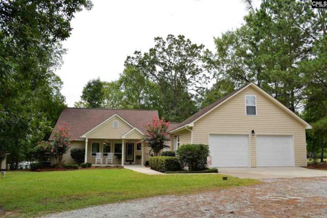 1043 Seagull Lane, Prosperity, SC 29127 (MLS #452918) :: Home Advantage Realty, LLC