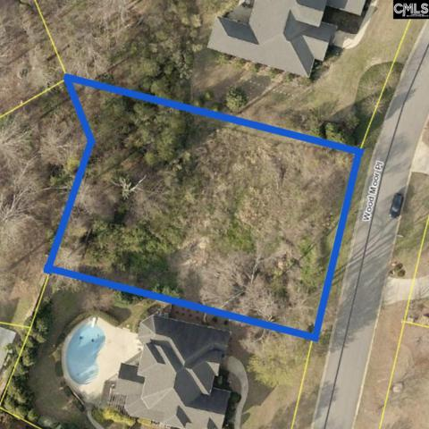 248 Wood Moor Place, Columbia, SC 29212 (MLS #452976) :: EXIT Real Estate Consultants