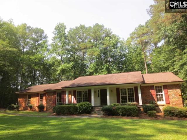 244 Fox Run Drive, Hopkins, SC 29061 (MLS #453096) :: Home Advantage Realty, LLC