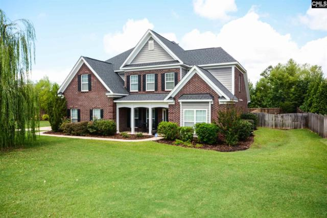 101 S Old Market Lane, Irmo, SC 29063 (MLS #453108) :: The Olivia Cooley Group at Keller Williams Realty