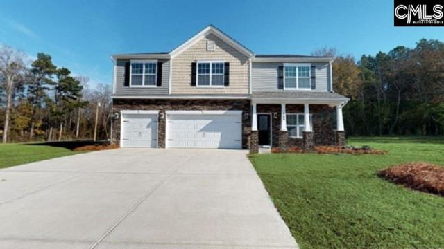 512 Pine Log Run, Chapin, SC 29036 (MLS #453163) :: Home Advantage Realty, LLC