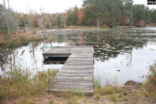 TBD Edisto Lake Road #37, Wagener, SC 29164 (MLS #453302) :: EXIT Real Estate Consultants