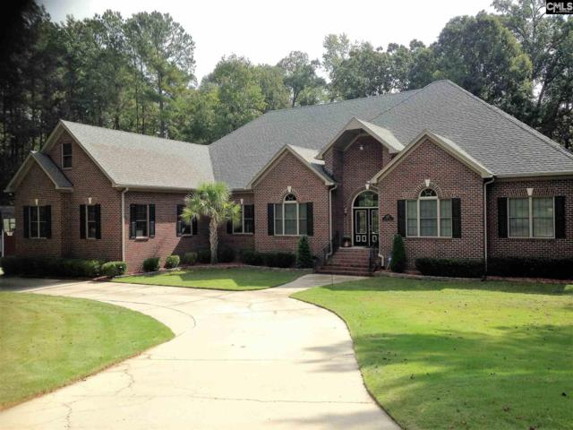 127 Mallory Drive, Lexington, SC 29072 (MLS #453326) :: EXIT Real Estate Consultants