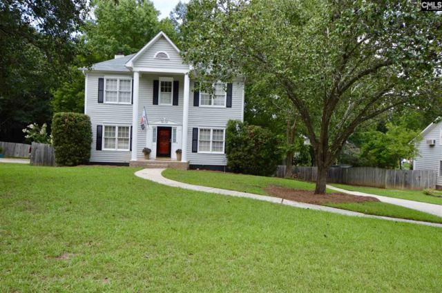 133 Copper Ridge Road, Columbia, SC 29212 (MLS #453341) :: EXIT Real Estate Consultants
