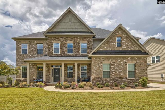 603 Riverdale Court, Chapin, SC 29036 (MLS #453352) :: EXIT Real Estate Consultants