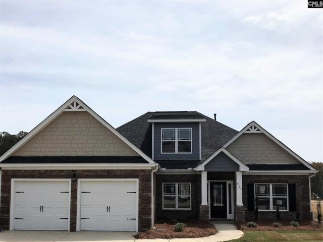245 Lever Pass Road #25, Chapin, SC 29036 (MLS #453508) :: Home Advantage Realty, LLC