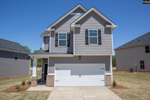 209 Bickley View Court #25, Chapin, SC 29036 (MLS #453548) :: RE/MAX AT THE LAKE