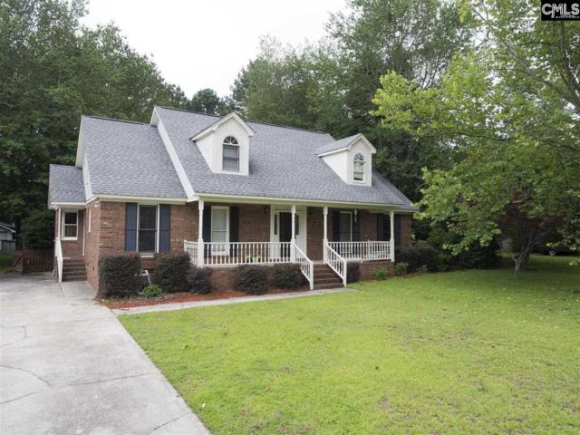 219 River Crossing, Lexington, SC 29072 (MLS #453599) :: EXIT Real Estate Consultants
