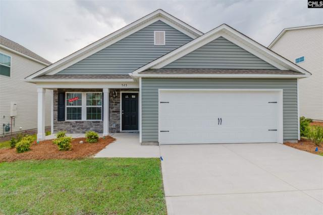 523 Walking Lane #55, Lexington, SC 29073 (MLS #453627) :: EXIT Real Estate Consultants