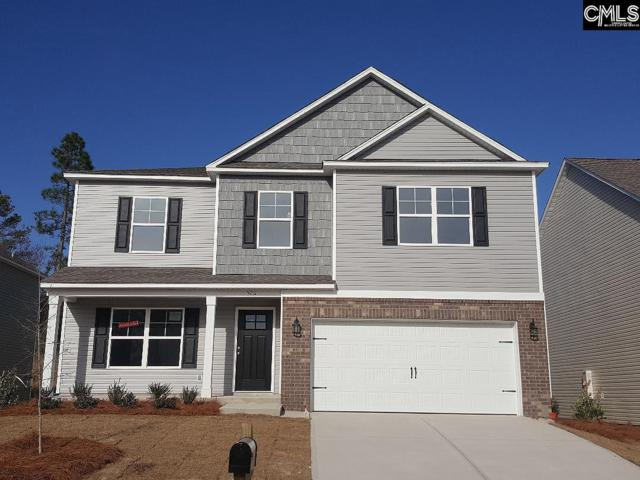 526 Walking Lane, Lexington, SC 29073 (MLS #453628) :: EXIT Real Estate Consultants