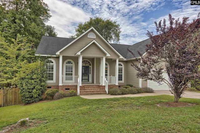 133 Wicklow Court, Irmo, SC 29063 (MLS #453701) :: Home Advantage Realty, LLC