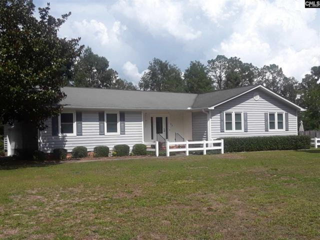 312 Calcutta Drive, West Columbia, SC 29172 (MLS #453725) :: EXIT Real Estate Consultants