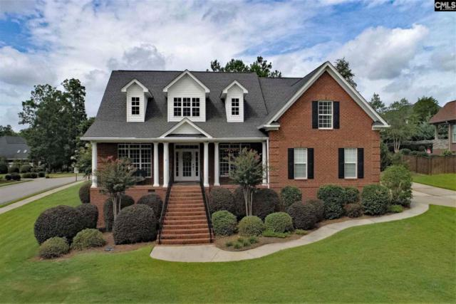 156 Pintail Lake Drive, Gilbert, SC 29054 (MLS #453810) :: EXIT Real Estate Consultants
