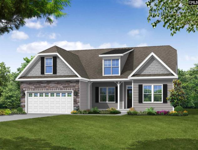 208 Laurelbrook Drive, Chapin, SC 29036 (MLS #453854) :: Home Advantage Realty, LLC