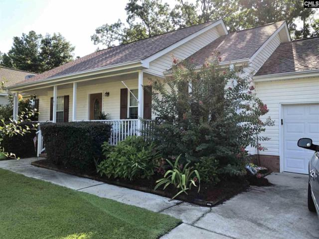 141 Shipyard Boulevard, Chapin, SC 29036 (MLS #453987) :: EXIT Real Estate Consultants