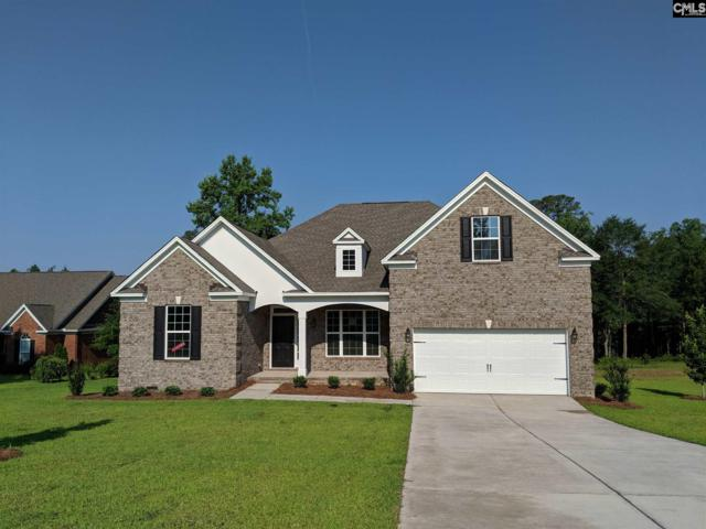 132 Living Waters Boulevard, Lexington, SC 29073 (MLS #454107) :: EXIT Real Estate Consultants
